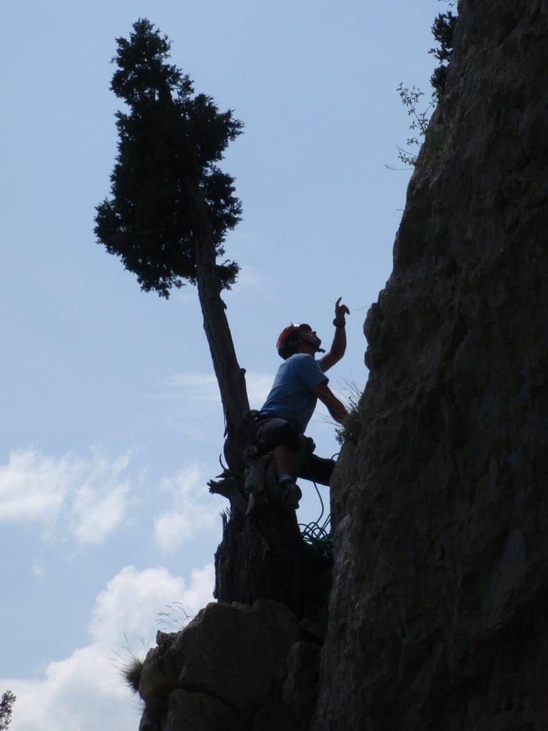 Relais proche d'un arbre sur la falaise du quiquillon...